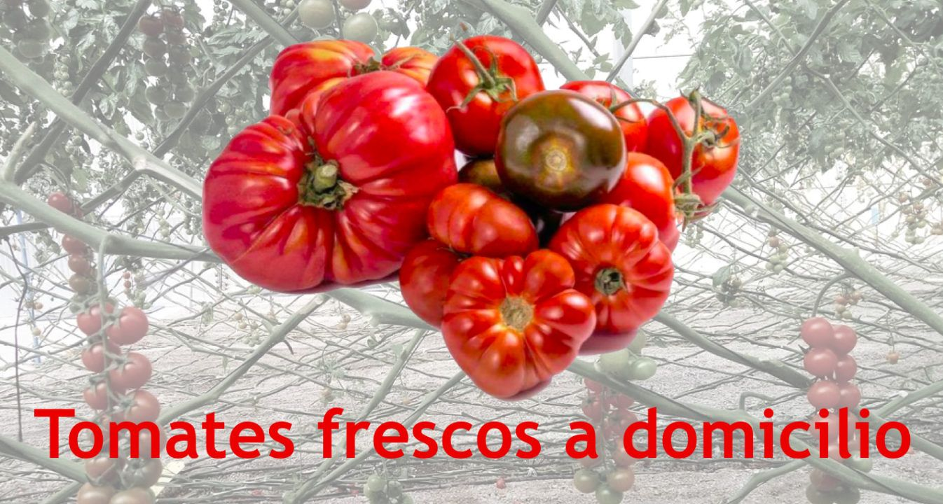 tomate online a domicilio