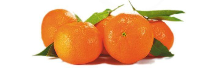 variedades de mandarinas