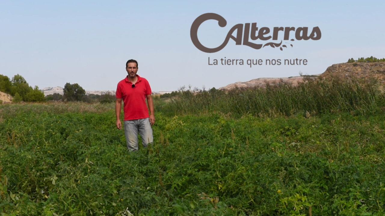 tomates a domicilio de Calterra