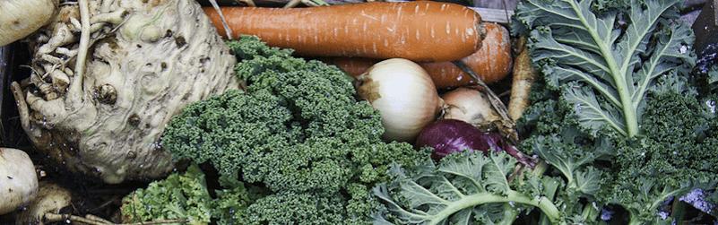 verduras de temporada de marzo
