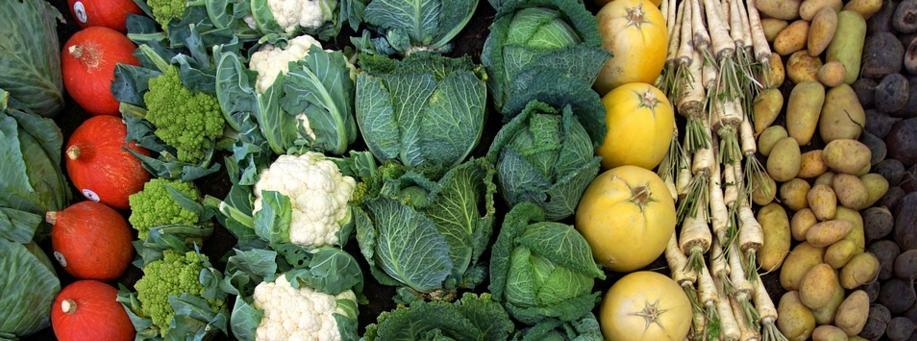 verduras con proteínas