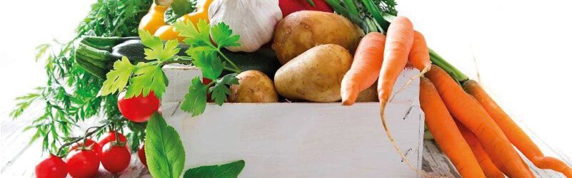 verduras de temporada en verano